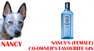 nancy favourite gin