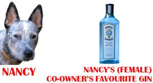 nancy favourite gin